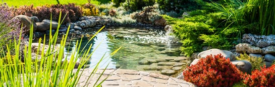 Enfield garden design and landscaping services